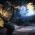 Mortal Kombat X news 08