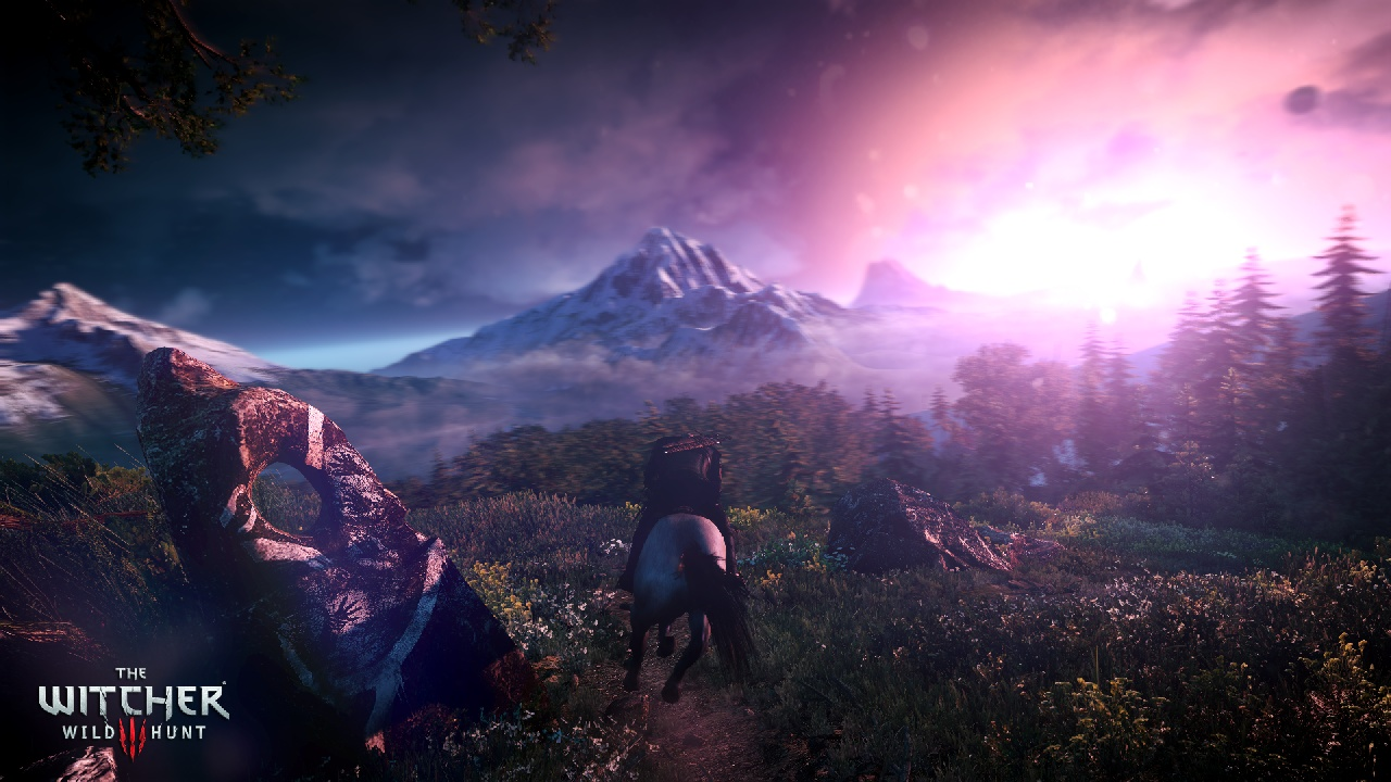 The Witcher 3 ante 11