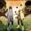 Naruto-Shippuden-Ultimate-Ninja-Storm-4_2014_12-21-14_003