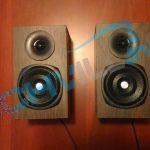 Trust Vigor 2.1, Satelliti, Speaker