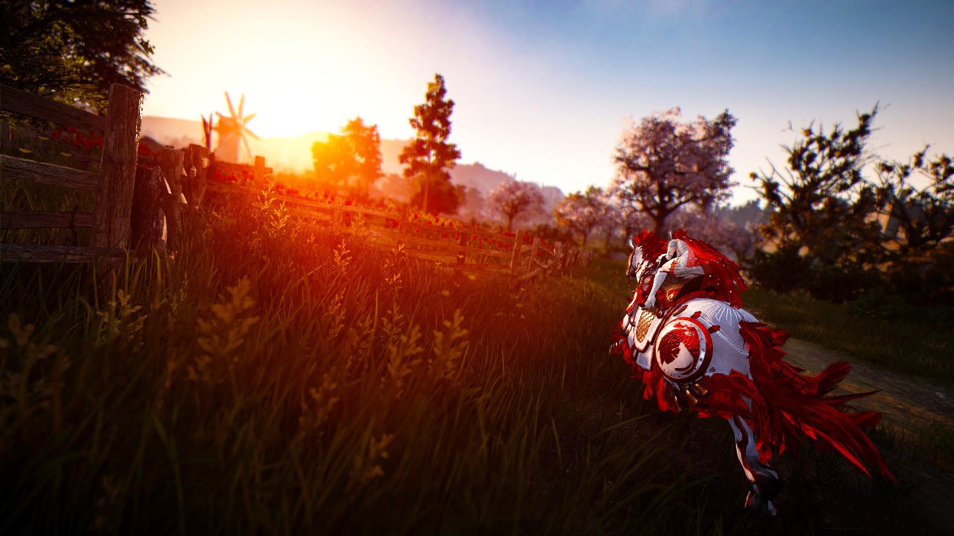 Black Desert Online: quest''™estate su Xbox One, speranze per una versione Switch