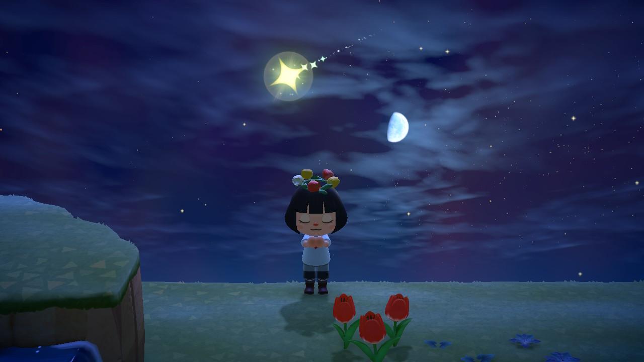 Animal Crossings: New Horizons star